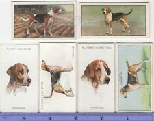 Foxhound Dog 6 Different Vintage Ad Trade Cards #3 Canine Pet