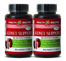Ginger Root Powder - KIDNEY SUPPORT 700 Goldenrod Herb 2 Bottles