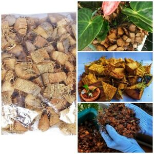 Coconut (coco) Coir Chips - great additive to orchid mixes and citrus trees 100g