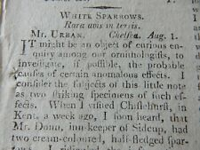 More details for abstract pages   x1  (1805)   white sparrows at sidcup pub  twitcher interest