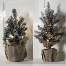 Pre Lit Warm White LED Mini Frosted Table Top Artificial Indoor Christmas Tree