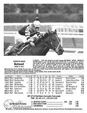 Seattle Slew Belmont Stakes Triple Crown Print 1977