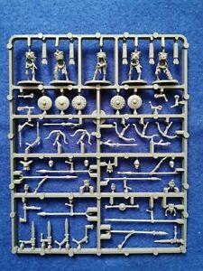 Oathmark Skeleton Infantry sprue