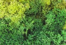 Faller 170729 ESCALA H0, musgo de Islandia, mixto, verde, 50g 100g =