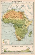 1931 MAPA ~ AFRICA VEGETACIÓN CONGO CUENCO MOUNTAINS SAHARA BOSQUE DEL DESIERTO