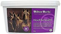 HILTON HERBS HOOF & HEALTH SUPPLEMENT 4KG FOR HORSES SUPPORTS HEALTHY HOOVES