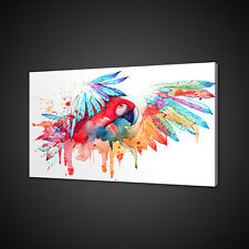ABSTRACT PARROT CANVAS PICTURE PRINT WALL ART HOME DECOR FREE FAST DELIVERY