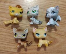 Littlest Pet Shop Cat Kitten Egyptian Angora Shorthair Grey Stripes Orange Hair