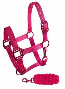 PINK PURPLE TEAL Triple Thick Nylon Adjustable Halter w Lead Rope PONY SZ 101HLP