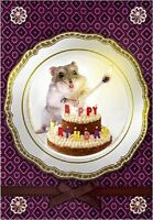 Carte de voeux joyeux anniversaire Hamster 10 cm x 7 cm BIRTHDAY CARD