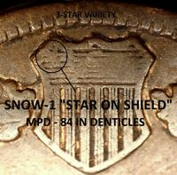 "1884 Indian Head Cent - FINE SNOW-1, ""STAR ON SHIELD"" 3-STAR MPD  (M088)"