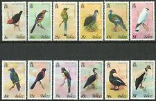 More details for belize 1977 1978 qeii birds complete set of 12 value to $1 mnh