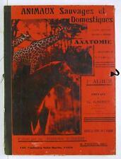Animaux Sauvages Domestiques Photogravure Plates 3 Vol Books c1930