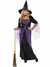 Pretty Potion Witch Costume Ladies Halloween Adult Witches Fancy Dress Womens