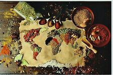 FOOD ART Still Life World Map of Colored Indian Spices New Russian Postcard