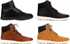 Timberland Graydon Men's Sneaker Boots Shoes Water Resistant NIB