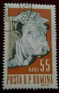 Romania:1962 Domestic Animals 55 B. Rare & Collectible Stamp.