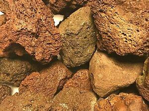 LOT 16  pierre lave aquarium support plantes java microsorium anubia