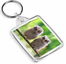 1 x Cute Baby Owls Wild Nature Family - Keyring- IP02 - Mum Dad Kids Gift#2322
