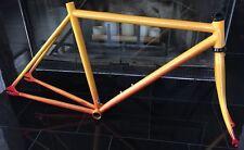 Fuji Track Frame 49cm Steel Custom Paint Job Fixie Single Speed Etc