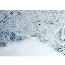 7X5Ft Winter Snow Road Tree Photography Backdrop Background Studio Vinyl Props
