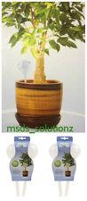 More details for 4 x aqua globe self watering bulbs house hanging patio plants indoor/outdoor