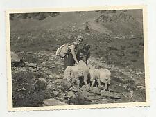 FOTO FOTOGRAFIA AUTENTICA ALPINISMO  ALPINISTI DONNE CON PECORE IN MONTAGNA