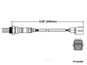 Oxygen Sensor-Walker Front WD Express 800 30015 745