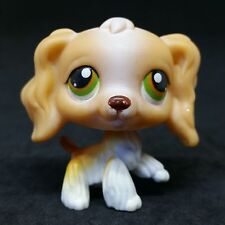 Littlest Pet Shop LPS #79 BIS Tan and White Cocker Spaniel Green Brown Eyes