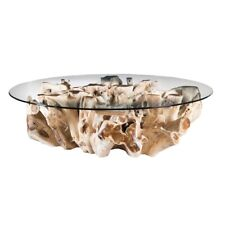 """60"""" W Alex Coffee Table Solid Tempered Glass Top Free Form Wood Root Base"""