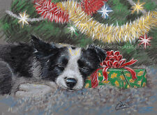 Border Collie Dog, Christmas cards pack of 10 by Paul Doyle. C499X