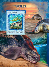 Sierra Leone 2016 MNH Turtles Galapagos Giant Tortoise 1v S/S Reptiles Stamps