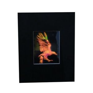 3D Eagle Matted Hologram Picture, Collectible  Embossed Type Film