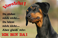 DOBERMANN - A4 Metall Warnschild SCHILD Hundeschild Alu Türschild - DBM 25 T2