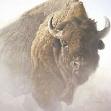 Robert Bateman Chief Buffalo Bison Wildlife Art Print Poster