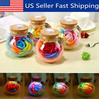 Valentine's Day Handmade Gifts Preserved Rose Flower in Glass Dome w/ LED