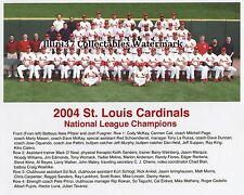 2004 ST LOUIS CARDINALS BASEBALL NL CHAMPS WORLD SERIES 8X10 TEAM PHOTO