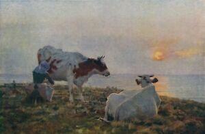 Old Vintage STOKES Art SETTING SUN Milkmaid Milking Dairy Cow Sunset 12x8 Print