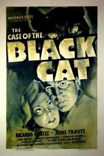 The Case of the Black Cat - 1936 Ricardo Cortez McGann Vintage Mystery Film DVD