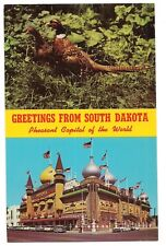 CORN PALACE & PHEASANTS Mitchell  NAME BAND 2 Pics South Dakota Postcard SD
