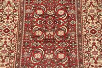 Excellent All-over Floral Hamedan Oriental Area Rug Hand-made Wool Carpet 5x10