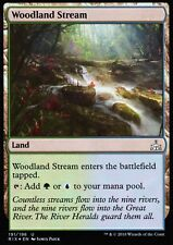 Woodland Stream FOIL | Presque comme neuf | RIVALS OF ixalan | magic mtg
