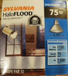 Two Sylvania HaloFlood 75 Watt Par30 Indoor Outdoor Flood Lights