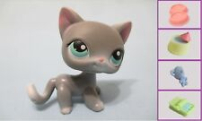 Littlest Pet Shop #126 Gray Siamese Shorthair Cat Kitten+1FREE Access LPS Authen