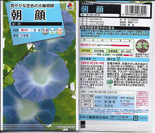 Japanese Morning Glory Seeds Suigestsu, Water Moon,Blue, FROM JAPAN