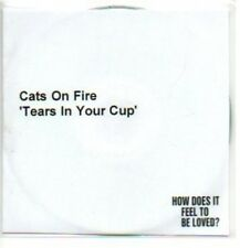 (231J) Cats On Fire, Tears In Your Cup - DJ CD