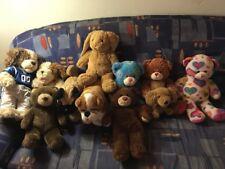 Build A Bear Hunde Bären Hase AUS USA High School Musical Peace Smallfry Fußball