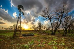 Country Photography Print - Picture of Windmill and Trees at Sunset in Kansas