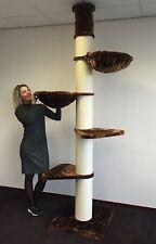 Kratzbaum große katzen XXL Maine Coon Tower Braun deckenhoch katzenkratzbaum