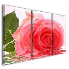 QUADRI MODERNI BEAUTIFUL ROSE II STAMPE SU TELA CON FIORI E ROSE COLORATE